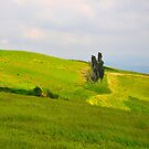 Life On A Hills V by Denis Molodkin