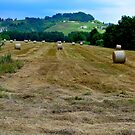 Tuscan Life V by Denis Molodkin