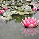 Softly Floating Away by Zoe Marlowe