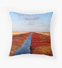 Red River Floodway Throw Pillow