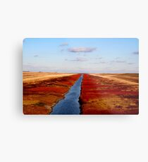 Red River Floodway Metal Print