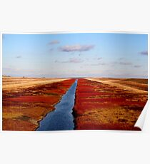 Red River Floodway Poster