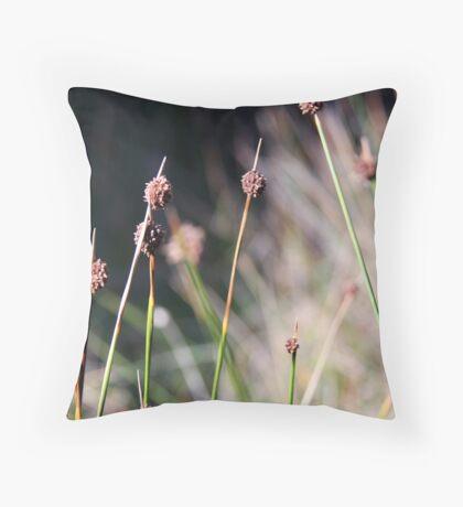 winter grass in the sun Throw Pillow