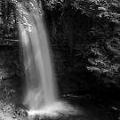 Glencar Waterfall , Co Leitrim by Martina Fagan