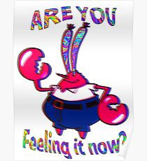 Are you feeling it now Mr Krabs? Poster