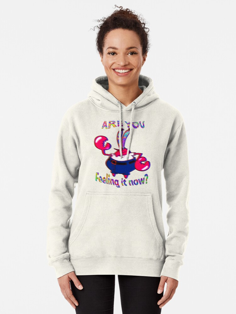 Alternate view of Are you feeling it now Mr Krabs? Pullover Hoodie