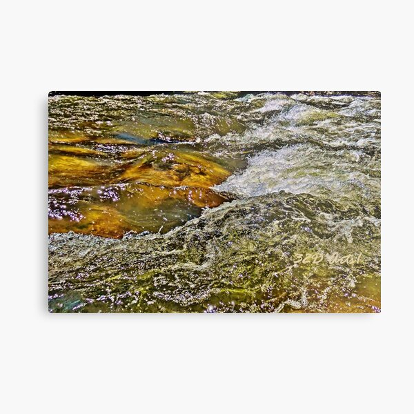 Roaring Fork River, Aspen No. 5 Metal Print