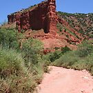 Caprock Canyons by Travis Niebuhr