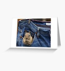 Just Hanging Out Greeting Card