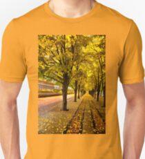 Boston, fall mood Unisex T-Shirt