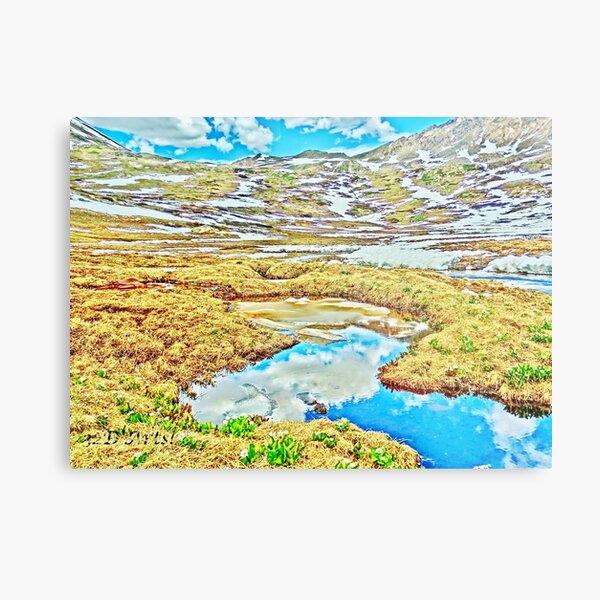 Roaring Fork River, Headwaters No.7 Metal Print