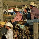 Cowboy Gallery by lincolngraham