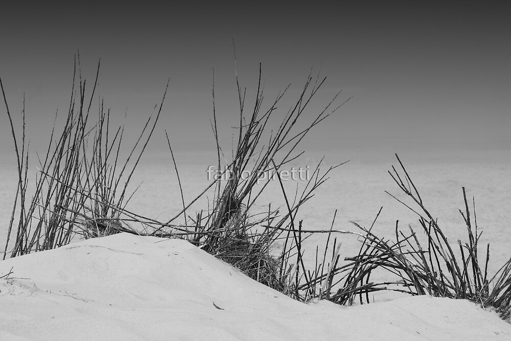 sand and bushes by fabio piretti