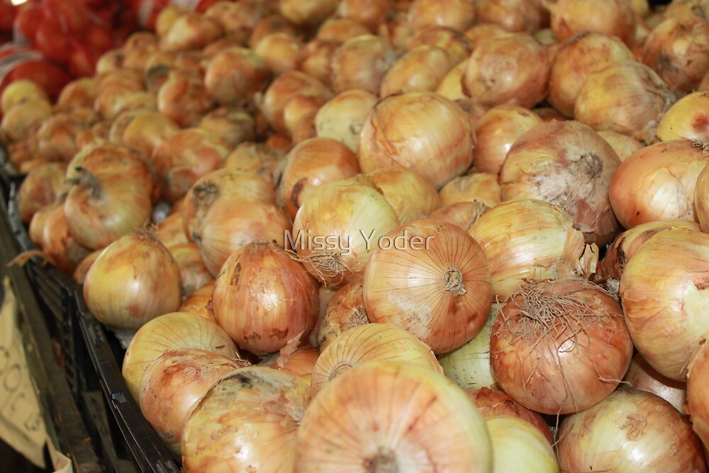 Onions by Missy Yoder