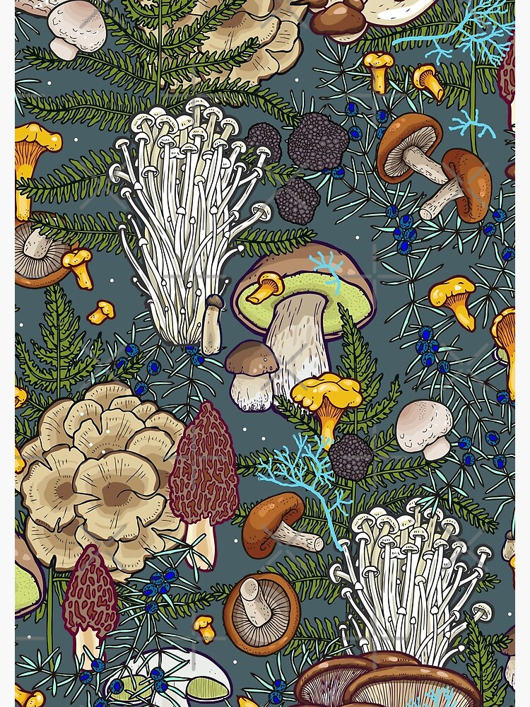 mushroom forest by smalldrawing