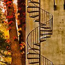 ESCAPE TO THE FALL by LudaNayvelt