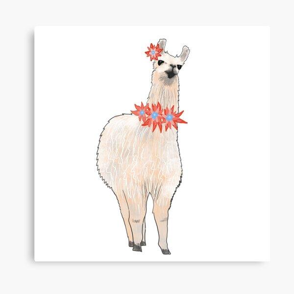 I'm a Llama & I'm Pretty Canvas Print