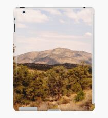Desert Brush iPad Case/Skin