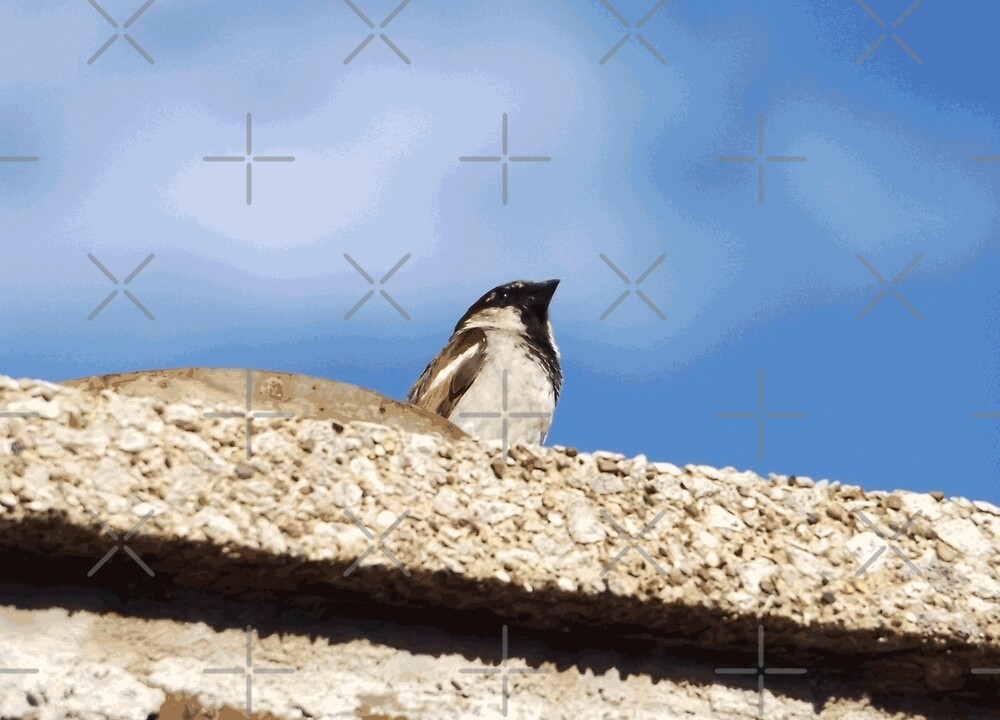 Chimney Top Dweller by someartworker