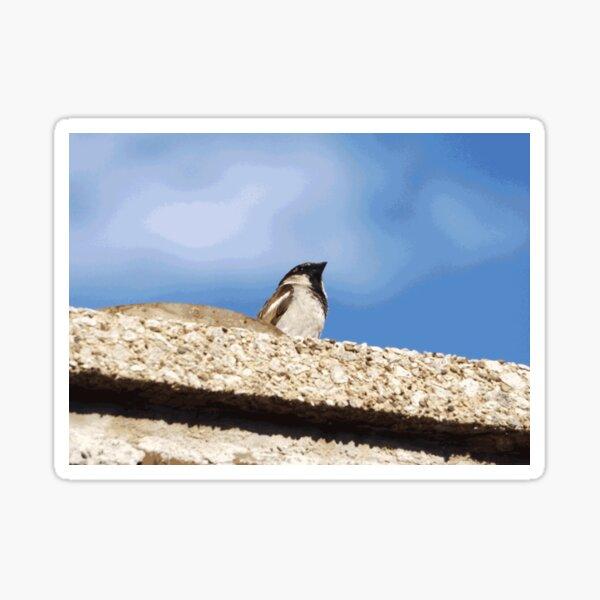 Chimney Top Dweller Sticker
