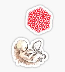 In The Womb Sticker