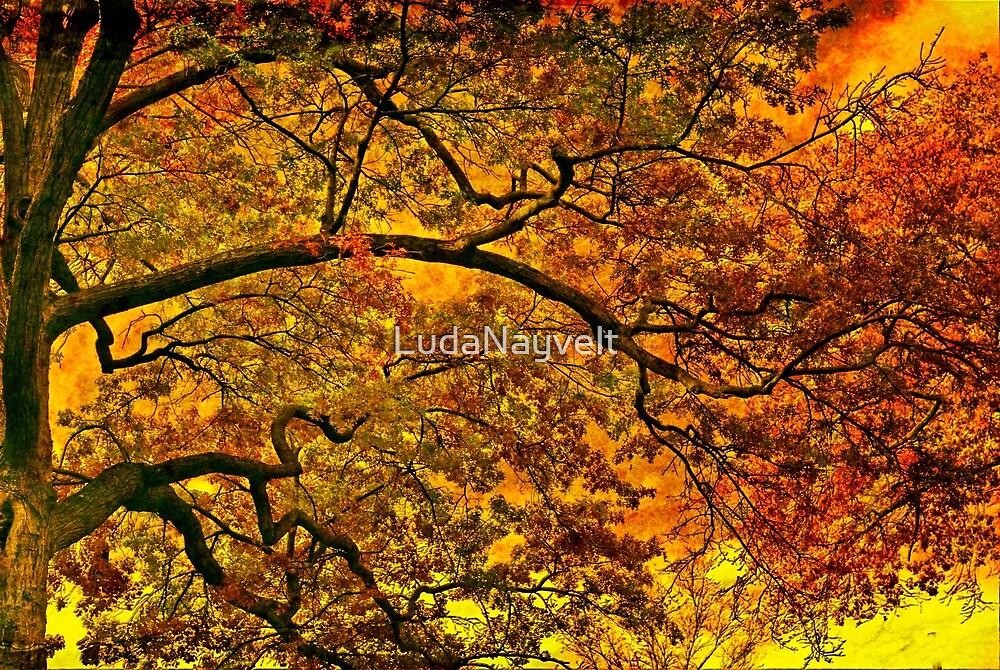 Burning fall by LudaNayvelt