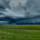 Storm a Comin by PFrogg