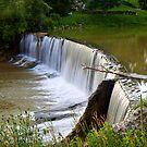 Otterville Dam by RandiScott