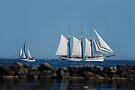 Sail Away by Elaine Manley