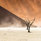 Three people silhouettes are going away from dead trees, surrounded by huge sand dunes of Namib Desert by Sergey Orlov