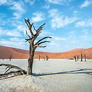 Ancient dead trees of Deadvlei, surrounded by the huge sand dunes of Namib desert by Sergey Orlov