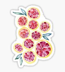 Sliced Grapefruits Watercolor Sticker