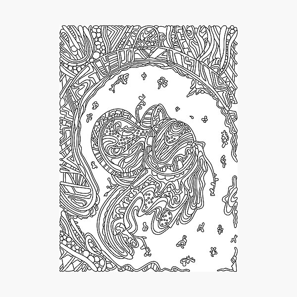 Wandering Abstract Line Art 50: Black & White Photographic Print