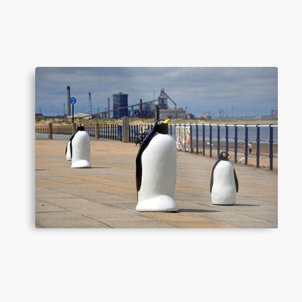 Redcar Penguins with Steel works in the background Metal Print