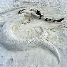 Beach Dweller by Nancee Rainaud