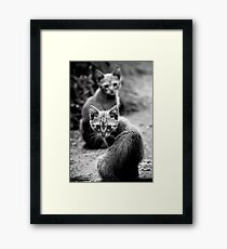 OnePhotoPerDay Series: 201 by L. Framed Print