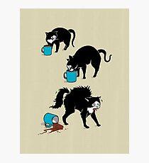 Kaffee Katze Fotodruck