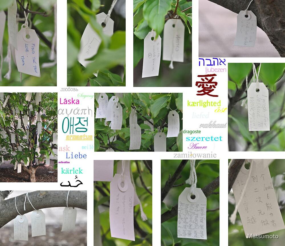 Yoko Ono's Wishing Tree - Washington D. C.  by Matsumoto