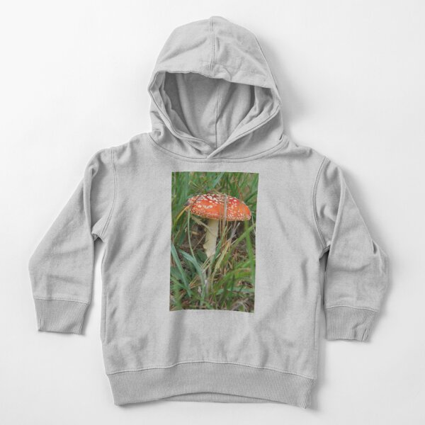 Fungi - Adelaide Hills Wine Region - Fleurieu Peninsula by South Australian artist Avril Thomas Toddler Pullover Hoodie
