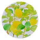 Fresh Crop - Lemons by Katy Hood