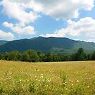 Great Smoky Mountains by Kristin Wertman