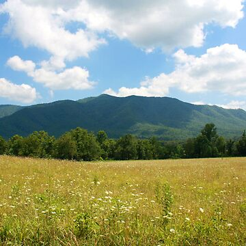 Great Smoky Mountains by mystical
