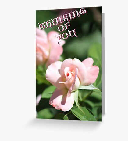 Thinking of You Rose Card Greeting Card