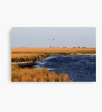 Autumnal Morning on the Marsh Canvas Print