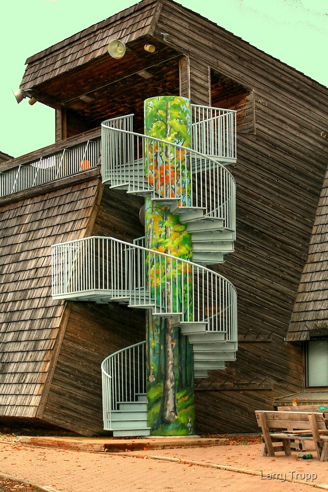 Spiral Stairs by Larry Trupp