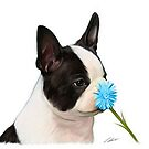 stop and smell the flower .. by Cazzie Cathcart