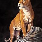 Golden Lioness by Pip Abraham