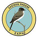 Eastern Phoebe by JadaFitch