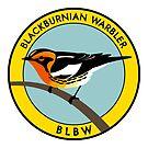 Blackburnian Warbler by JadaFitch
