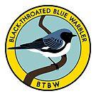 Black-throated Blue Warbler by JadaFitch